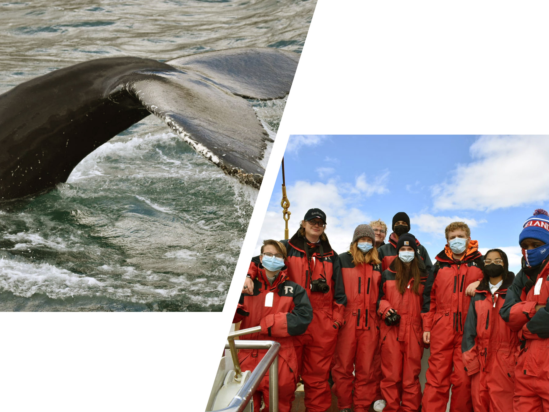 group is ready to travel again and also ready to whale watch